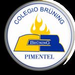 Aula Virtual Bruning